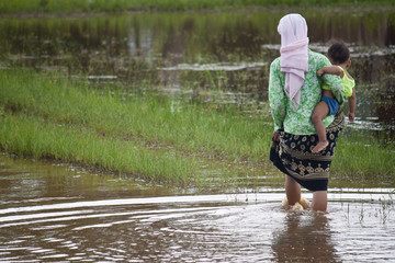 Woman with child in paddy field, Cambodia