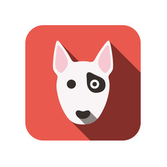 animal face ui flat design