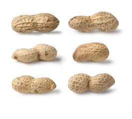 Set of Peanut isolated