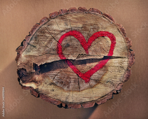 Love and save nature, red heart drawn on a tree trunk