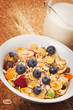 Muesli with milk and fresh berries