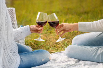 clinking glases with wine on a picnic