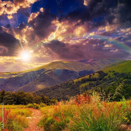 sosny-blisko-doliny-w-gorach-na-zboczu-pod-wieczor-s
