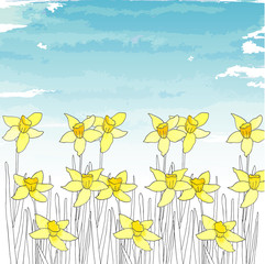 Spring template with narcissus (daffodils)