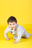 little boy on yellow background