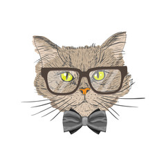 Portrait of hipster cat