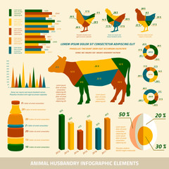 Animal husbandry infographics flat design elements