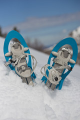 Blue Snowshoes on the Snow