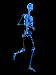 3d rendered illustration - jogger skeleton