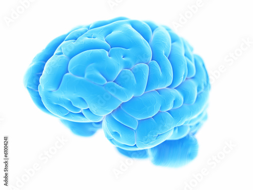 canvas print picture 3d rendered illustration - human brain