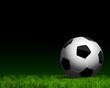 soccer ball on grass close up