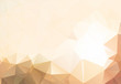 Flesh color abstract background polygon