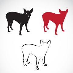 Vector image of a miniature pinscher