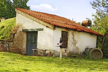 Heviz Egregy hill Hungary wine yards