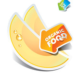 Icon of sliced melon with the arrow by organic food. Vector illu