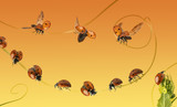 Composition of ladybirds on a orange gradient orange background