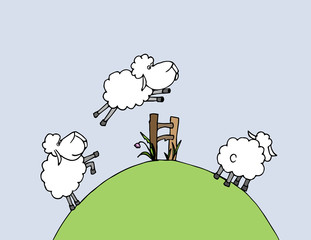 vector illustration: counting sheeps and insomnia