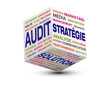 cube audit strategie solution