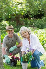 Smiling couple engaged in gardening