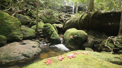 Dolly: Beautiful waterfall in rain forest, Thailand., HD 1080P