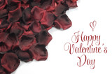 Red rose petals with Happy Valentines Day greeting