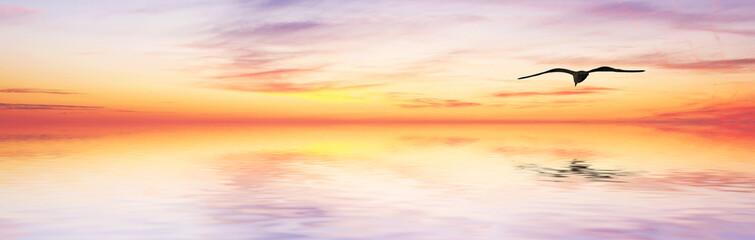el mar de colores en panoramica