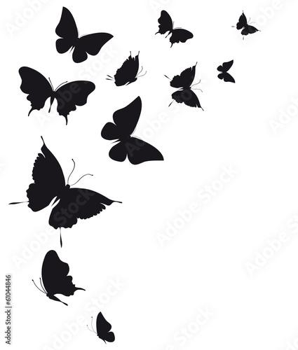 Naklejka butterflies design