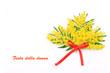 Fiori di mimosa con fiocco rosso