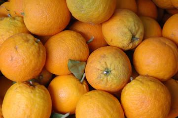 market oranges
