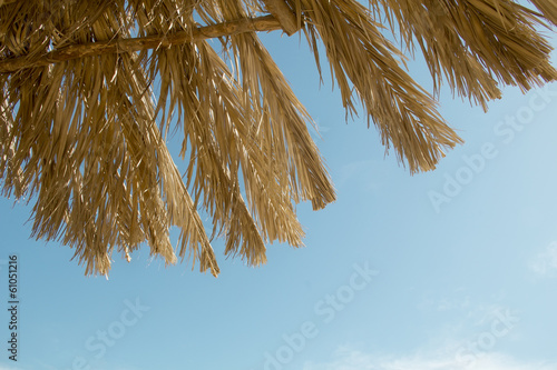 straw parasols against the sky