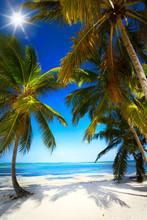 sztuka letnie Dziewicza tropikalnej plaży