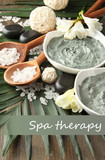 Composition with cosmetic clay for spa treatments,