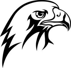 Eagle face art vecto picture