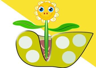 Flor en su tiesto