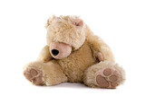 Sad teddy bear on white background