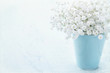 Baby's breath flowers in a vase
