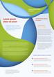 Business flyer template