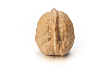 Isolated walnut on white background