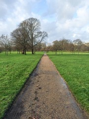 Empty Hyde Park