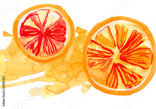segments of the orange