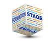 cube formation stage emploi