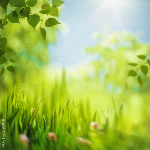 Abstract seasonal backgrounds with selective focus for your desi