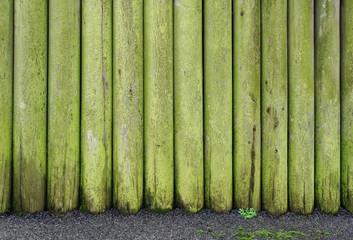Hintergrund Pfähle mit Algen