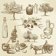 Obrazy na płótnie, fototapety, zdjęcia, fotoobrazy drukowane : harvest and olive product - hand drawn collection