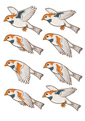 Sparrow Flying Animation Sprite