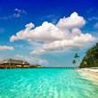 paradise island landscape. palm beach
