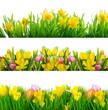 3 Frühlingsfreisteller wiesen