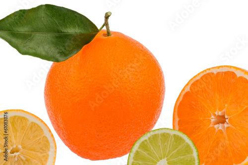 reflection of an orange