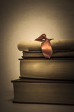 Vintage Style Book Stack with Diploma