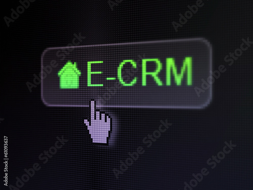 Finance concept: E-CRM and Home on digital button background
